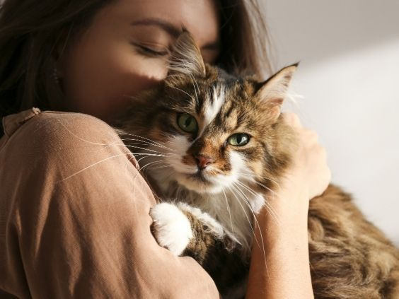 What Homeowners Should Know When Getting Their First Pet