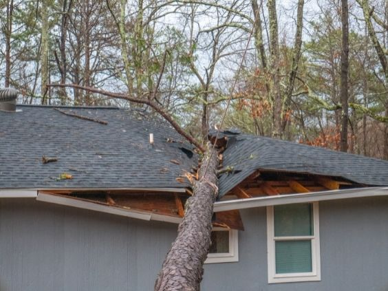 How To Recover After a Storm Damages Your Home