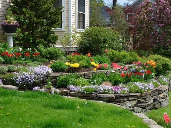 Front Yard Landscaping Ideas That Add Value to Your Home